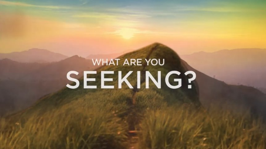 What Do You Seek?