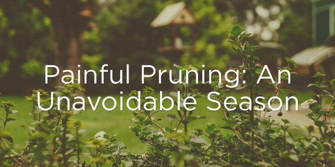 Painful Pruning An Unavoidable Season True Woman Blog Revive Our Hearts