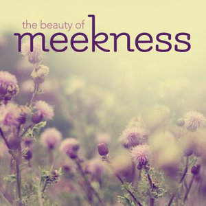 Meekness in Relationships